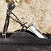 Le jetski - Sculpture métalique (2010)